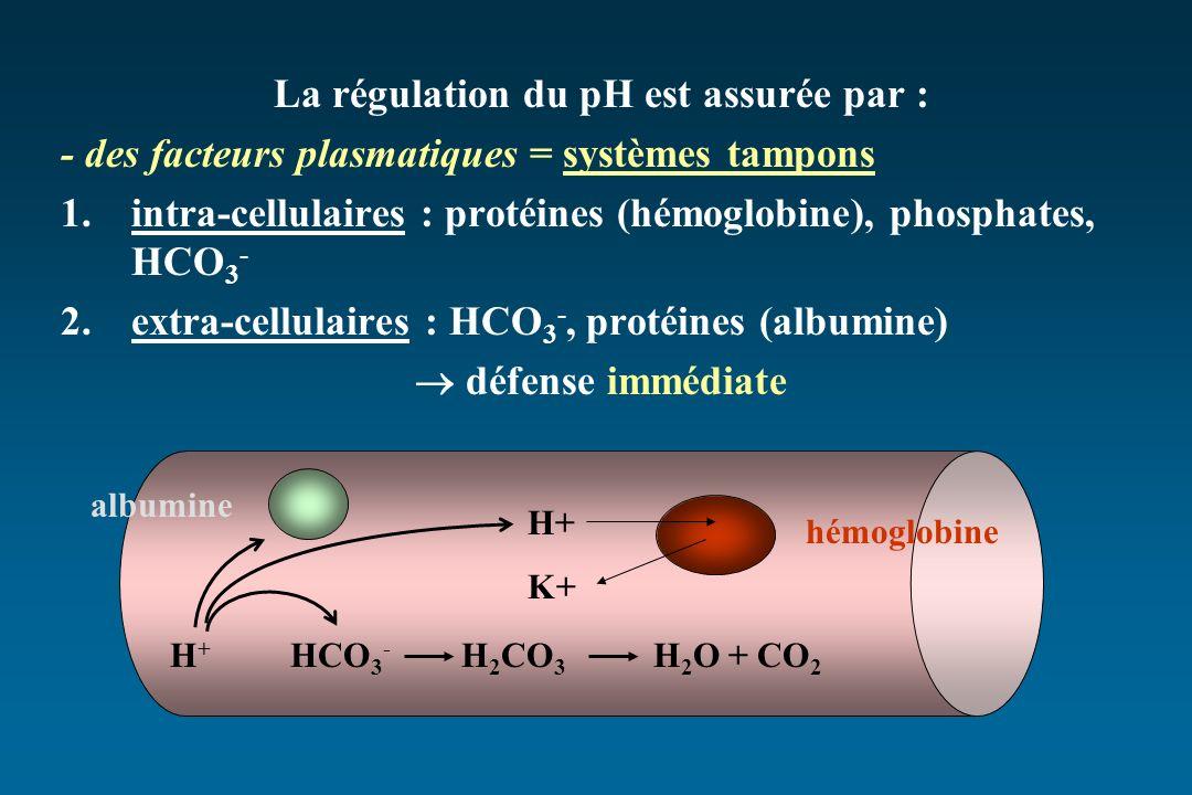 La régulation du pH est assurée par :