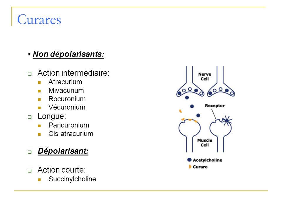 Curares • Non dépolarisants: Action intermédiaire: Longue: