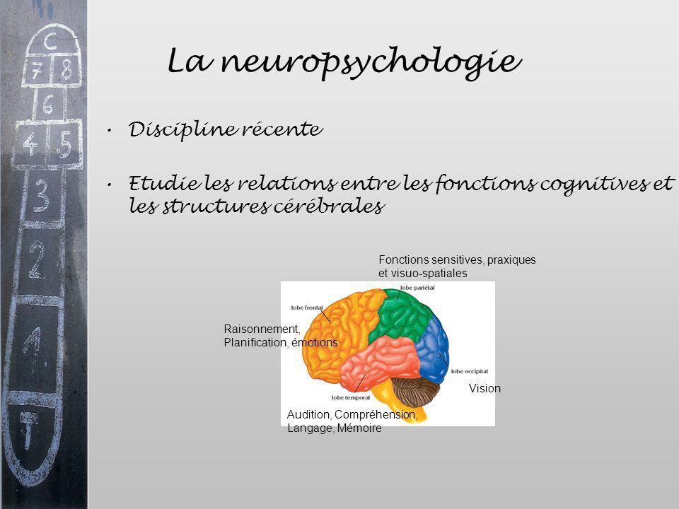 La neuropsychologie Discipline récente