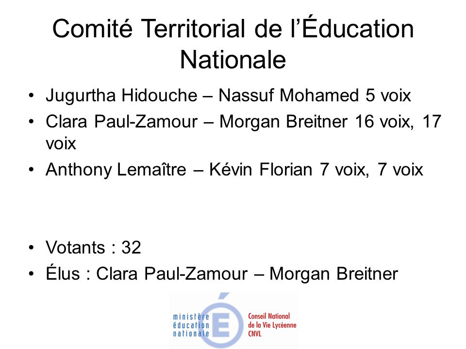 Comité Territorial de l'Éducation Nationale