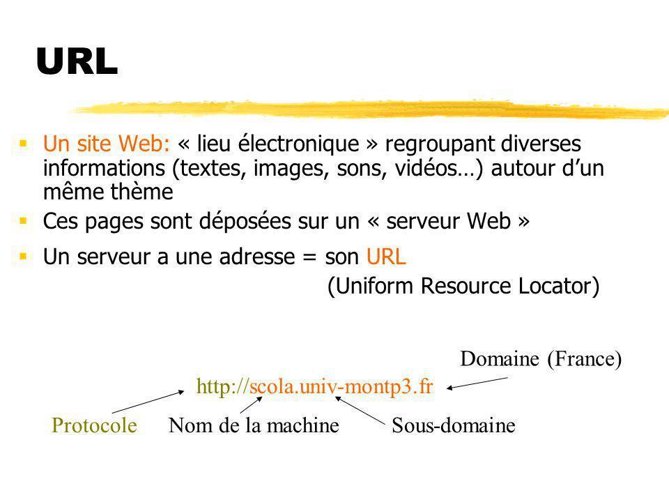 URL Un site Web: « lieu électronique » regroupant diverses informations (textes, images, sons, vidéos…) autour d'un même thème.
