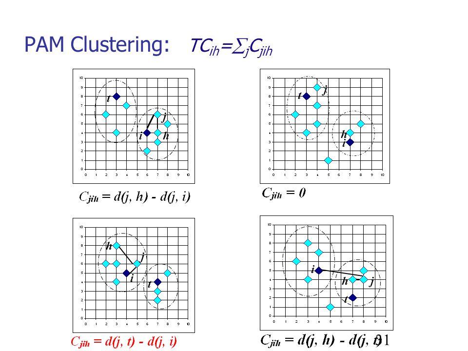 PAM Clustering: TCih=jCjih