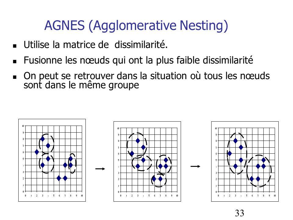AGNES (Agglomerative Nesting)