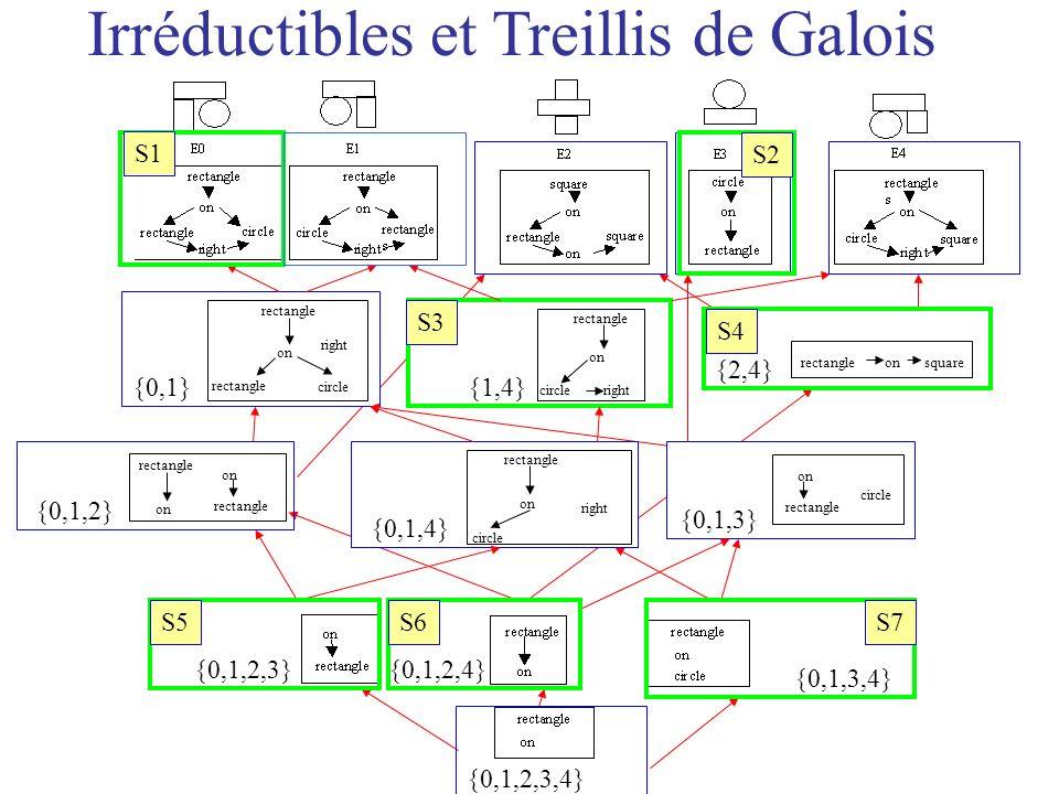 Irréductibles et Treillis de Galois