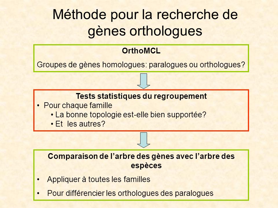 Méthode pour la recherche de gènes orthologues