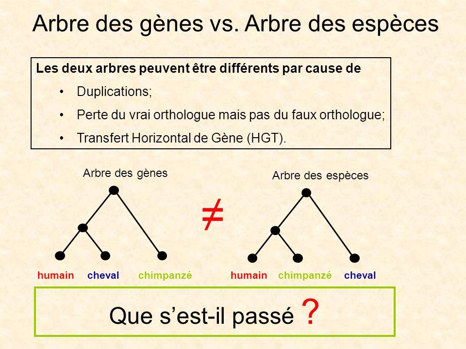 Arbre des gènes vs. Arbre des espèces