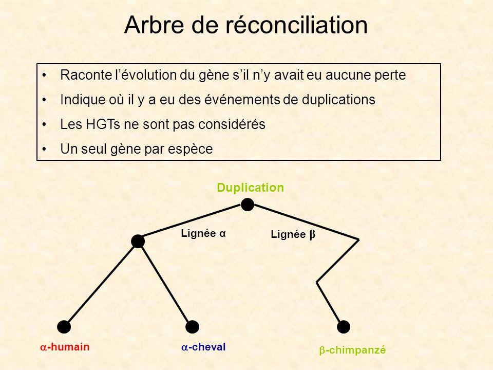 Arbre de réconciliation
