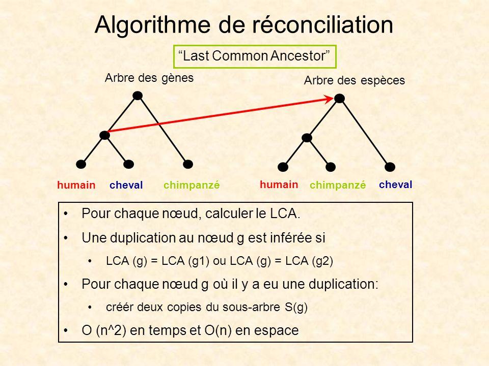 Algorithme de réconciliation