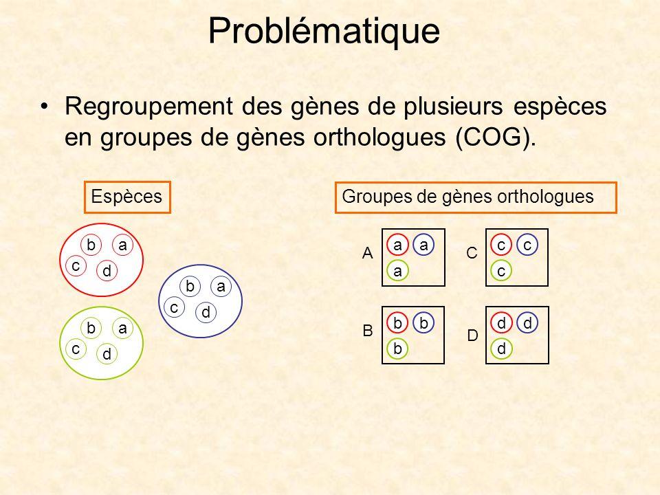Problématique Regroupement des gènes de plusieurs espèces en groupes de gènes orthologues (COG). Espèces.