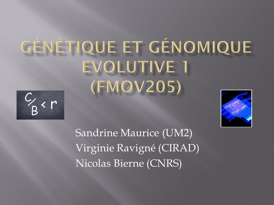 Génétique et Génomique Evolutive 1 (FMOV205)