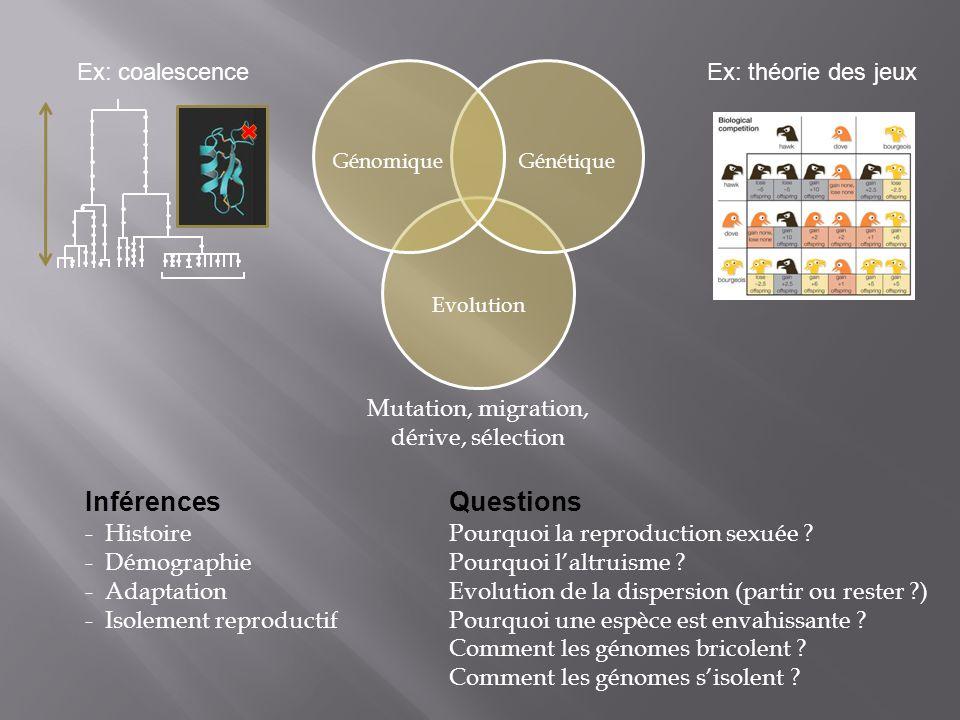 Inférences Questions Ex: coalescence Ex: théorie des jeux