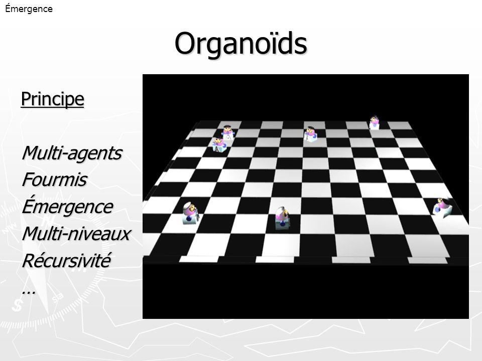 Organoïds Principe Multi-agents Fourmis Émergence Multi-niveaux