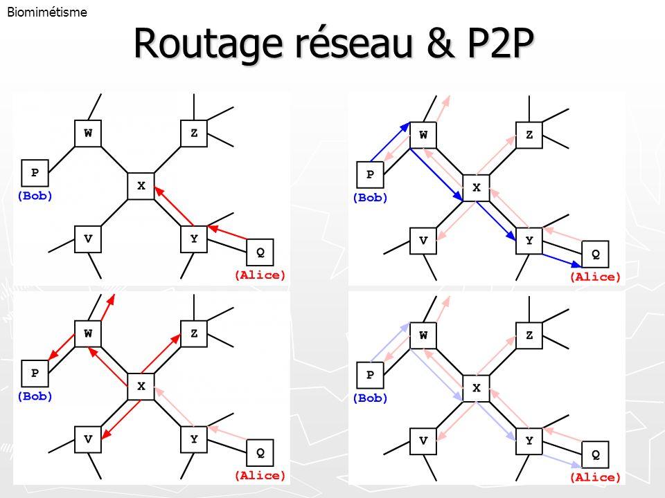 Routage réseau & P2P Biomimétisme