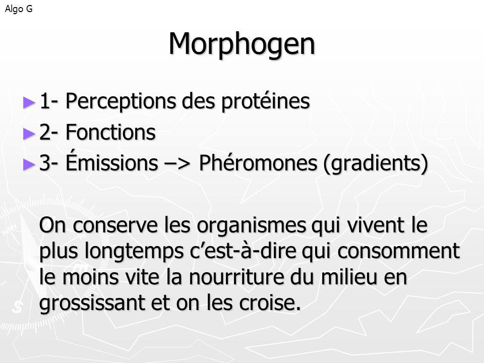 Morphogen 1- Perceptions des protéines 2- Fonctions