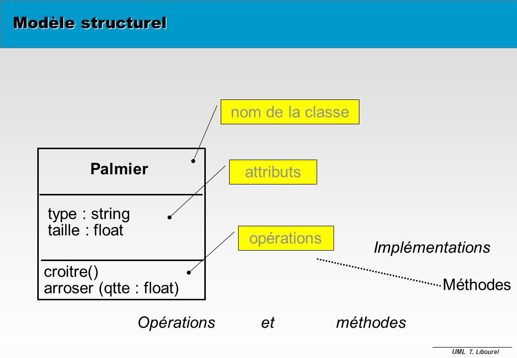 Modèle structurel nom de la classe. Palmier. attributs. type : string. taille : float. opérations.