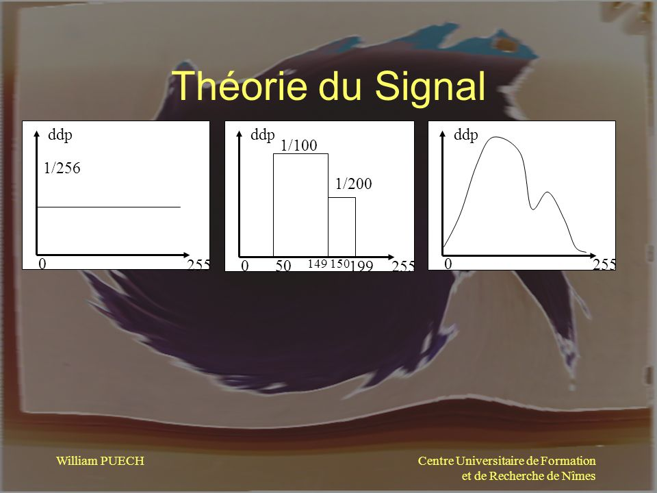 Théorie du Signal 255 ddp 1/256 255 ddp 1/100 1/200 50 199 ddp 255 149