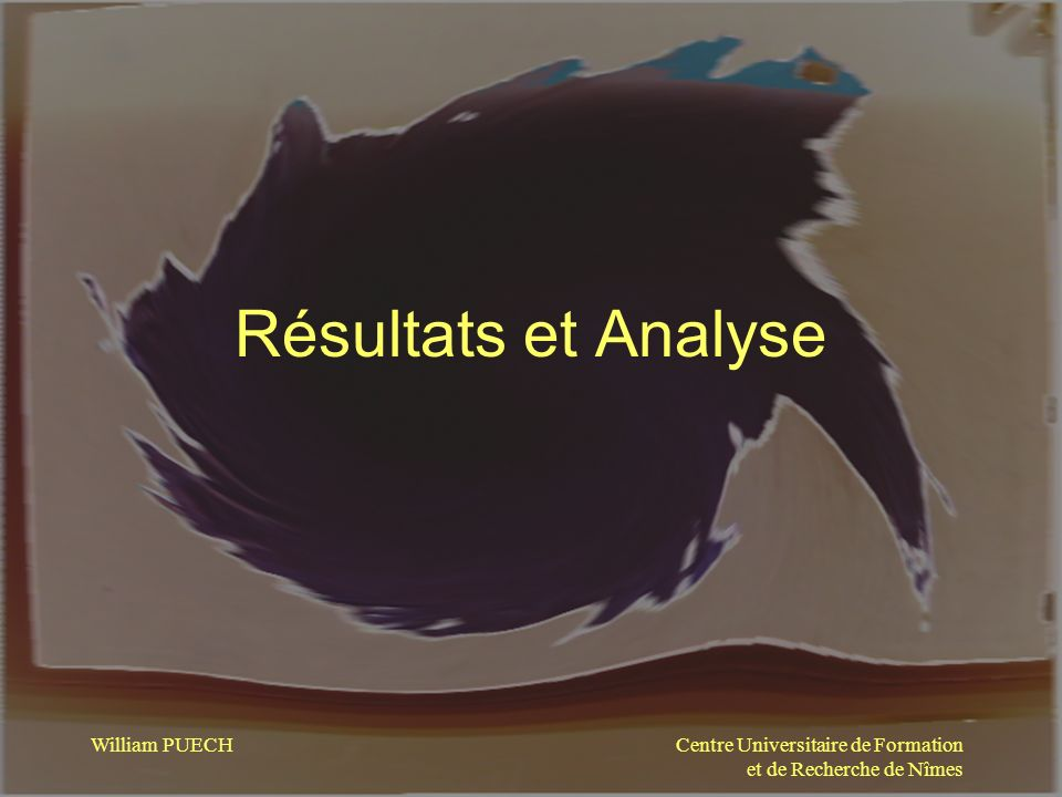 Résultats et Analyse William PUECH