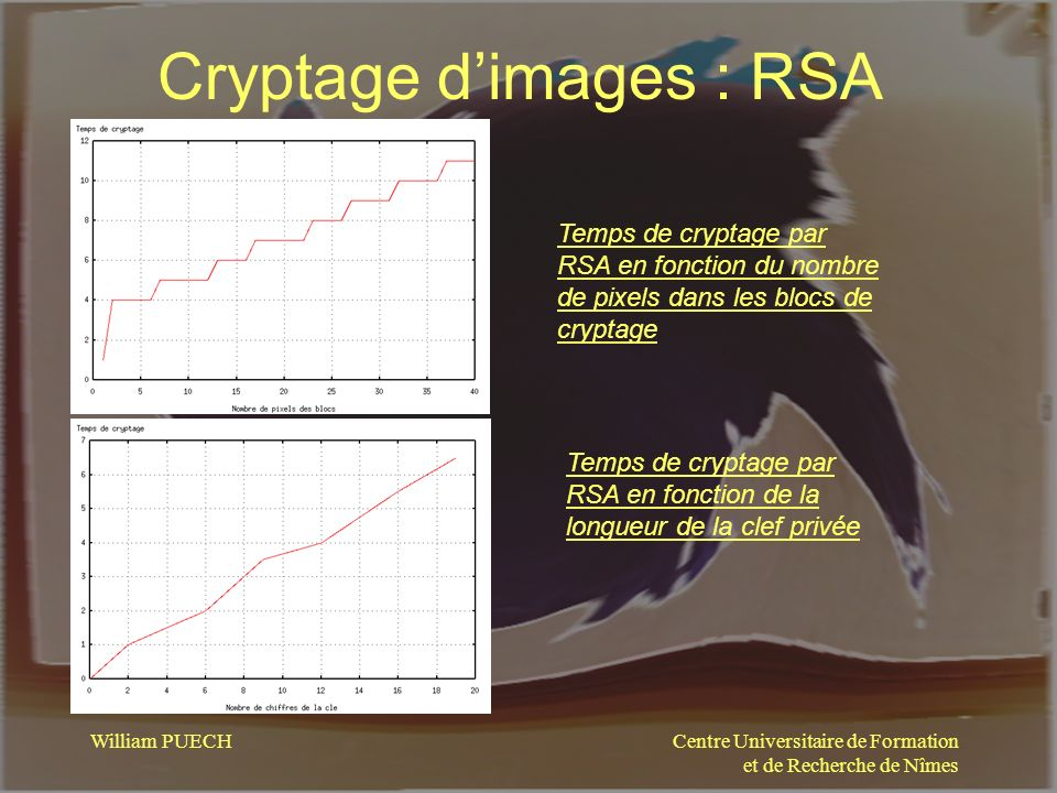 Cryptage d'images : RSA