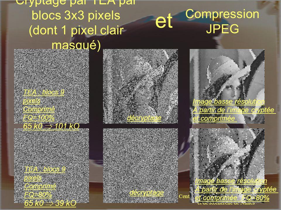 Cryptage par TEA par blocs 3x3 pixels (dont 1 pixel clair masqué)