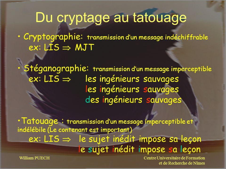 Du cryptage au tatouage
