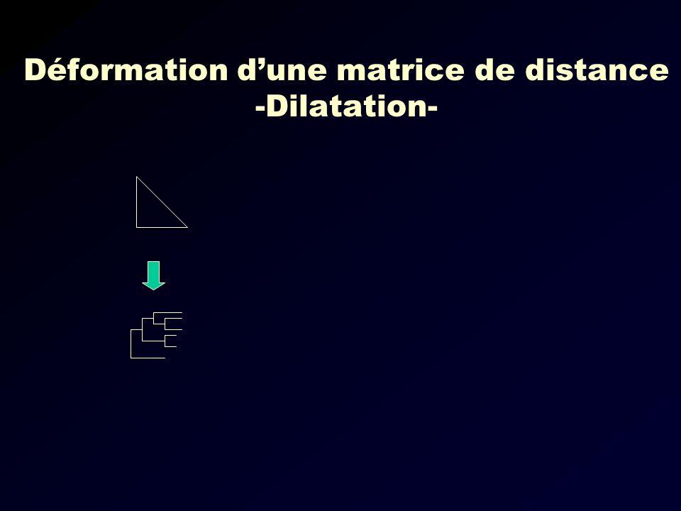 Déformation d'une matrice de distance -Dilatation-