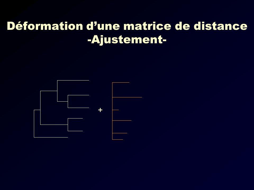 Déformation d'une matrice de distance -Ajustement-