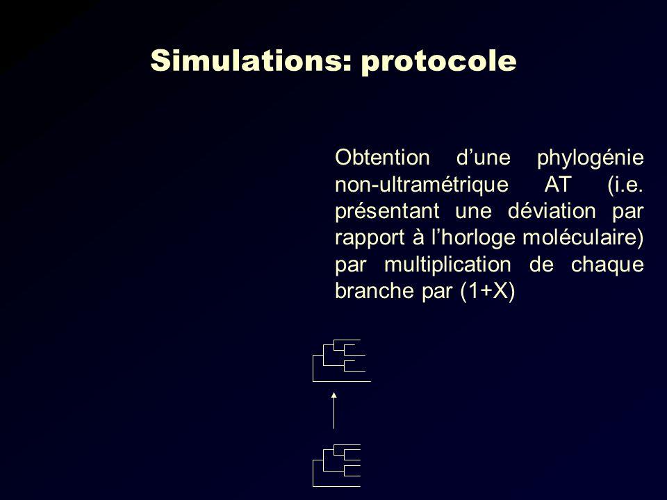 Simulations: protocole
