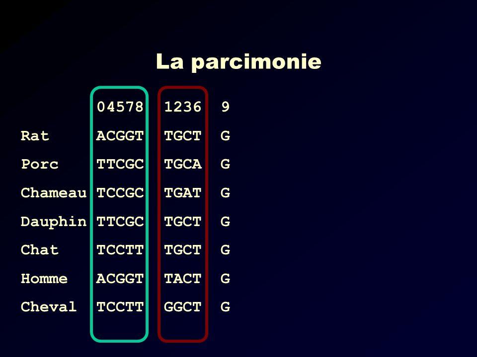 La parcimonie 04578 Rat ACGGT Porc TTCGC Chameau TCCGC Dauphin TTCGC