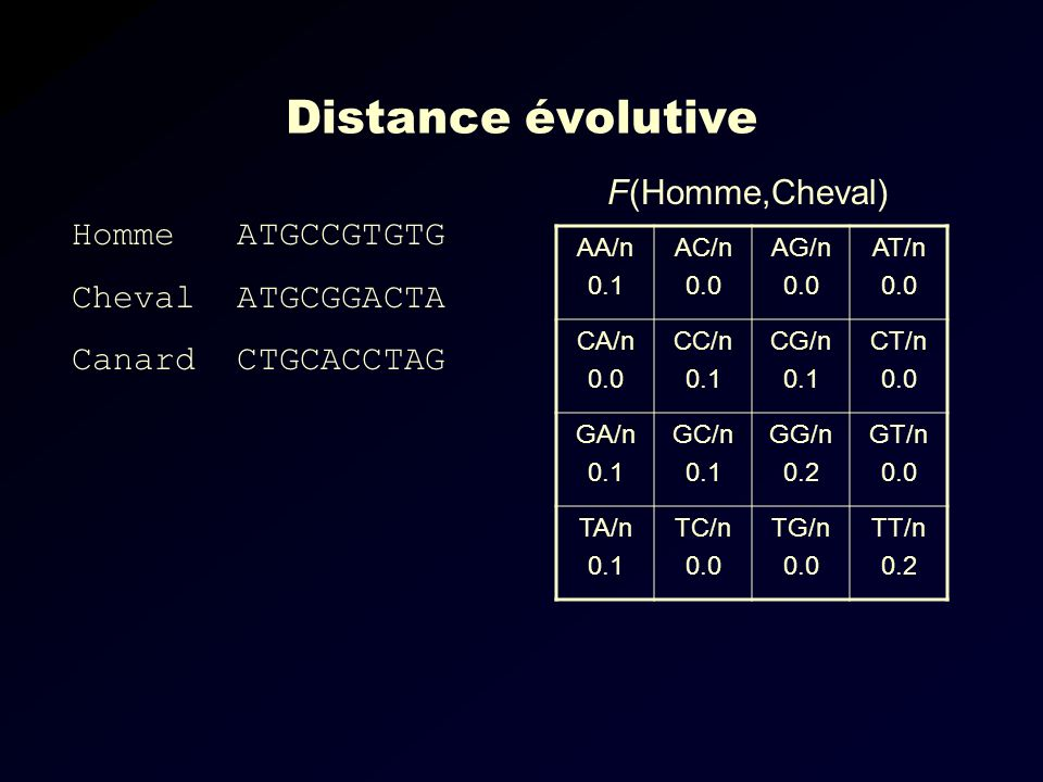 Distance évolutive F(Homme,Cheval) Homme ATGCCGTGTG Cheval ATGCGGACTA