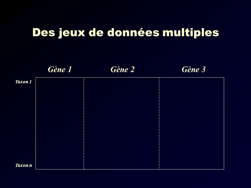 Des jeux de données multiples