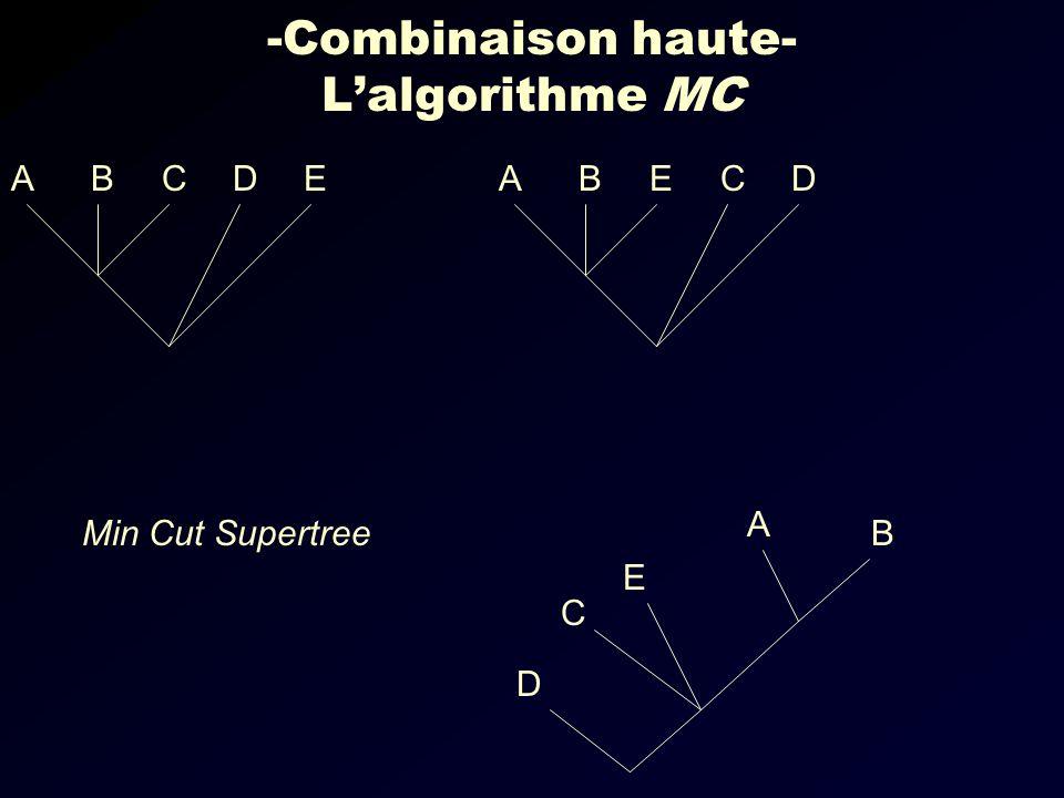 -Combinaison haute- L'algorithme MC