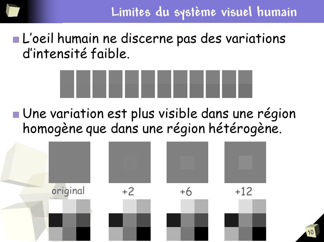 Contexte du stage Limites du système visuel humain