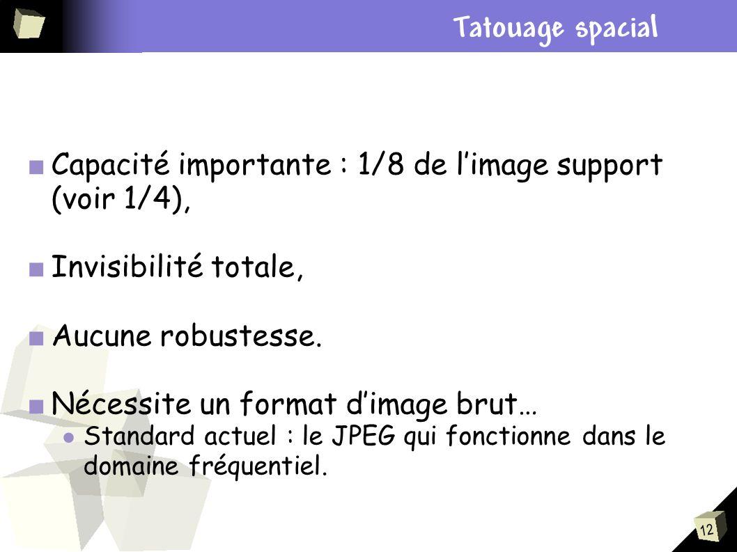 Plan Tatouage spacial. Capacité importante : 1/8 de l'image support (voir 1/4), Invisibilité totale,