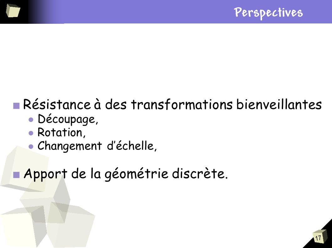 Plan Perspectives Résistance à des transformations bienveillantes