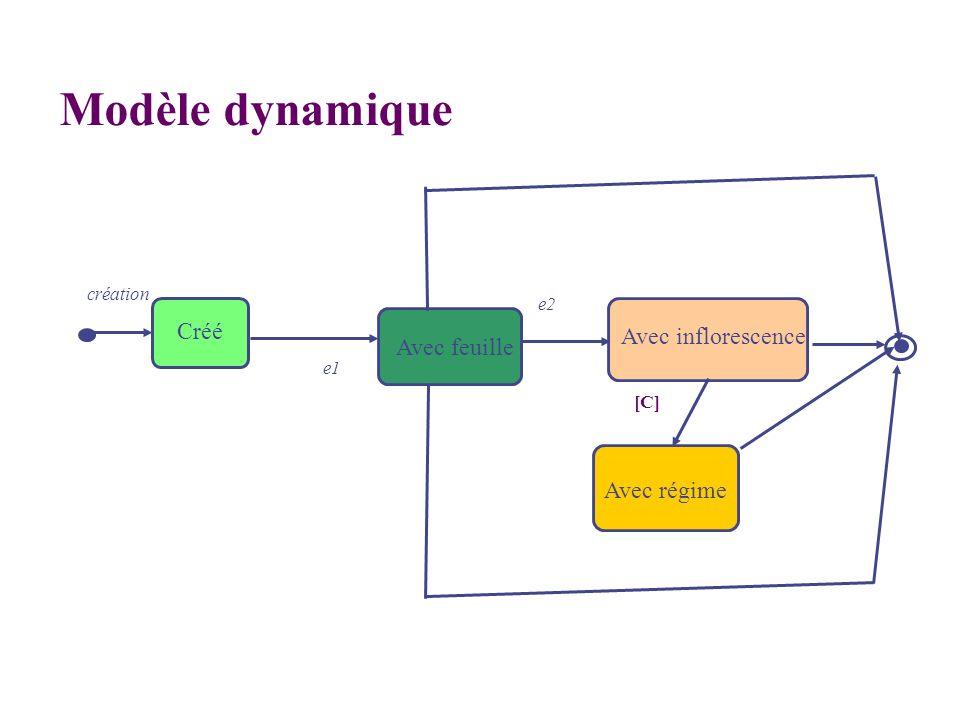 Modèle dynamique Créé Avec inflorescence Avec feuille Avec régime