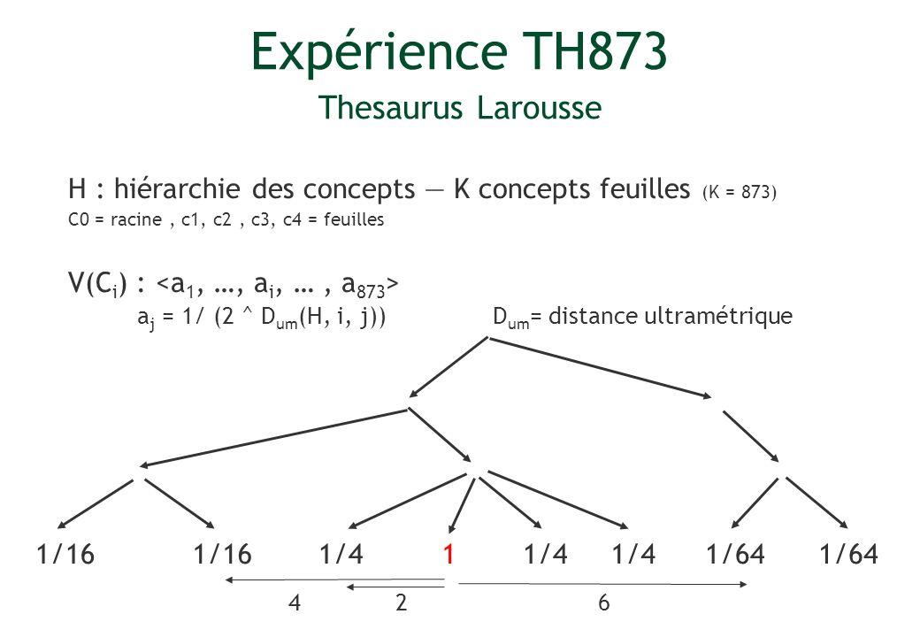 Expérience TH873 Thesaurus Larousse