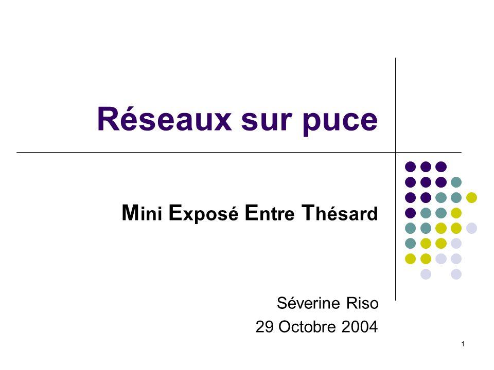 Mini Exposé Entre Thésard Séverine Riso 29 Octobre 2004
