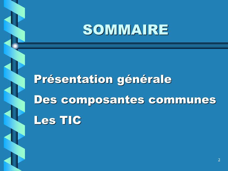 SOMMAIRE Présentation générale Des composantes communes Les TIC