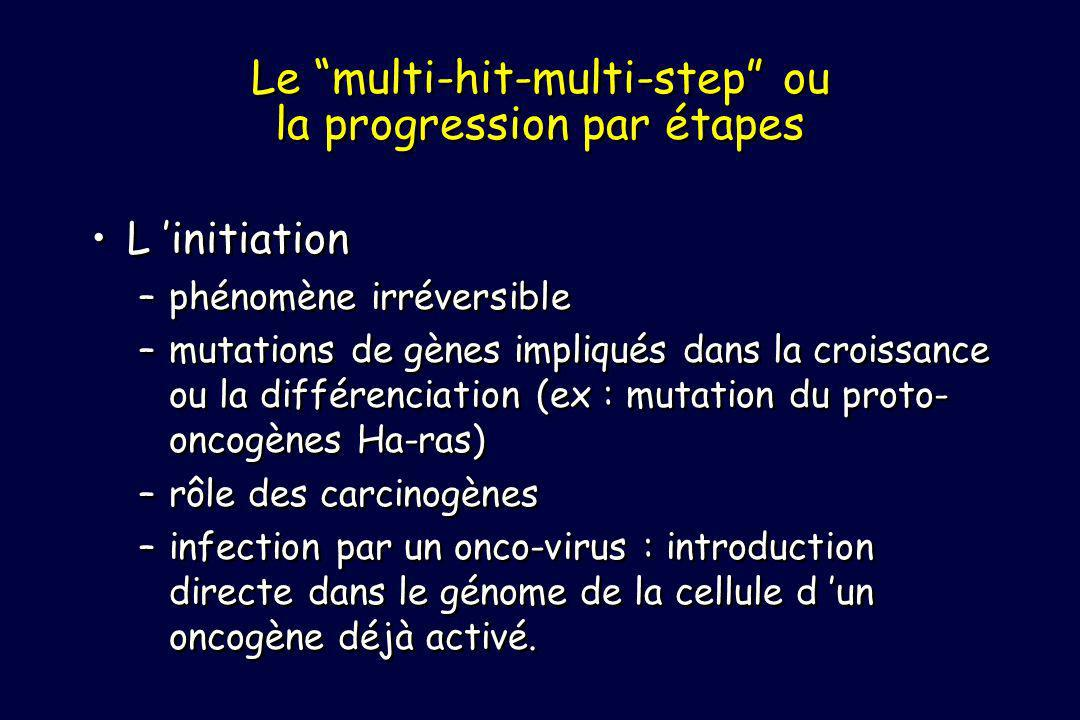 Le multi-hit-multi-step ou la progression par étapes