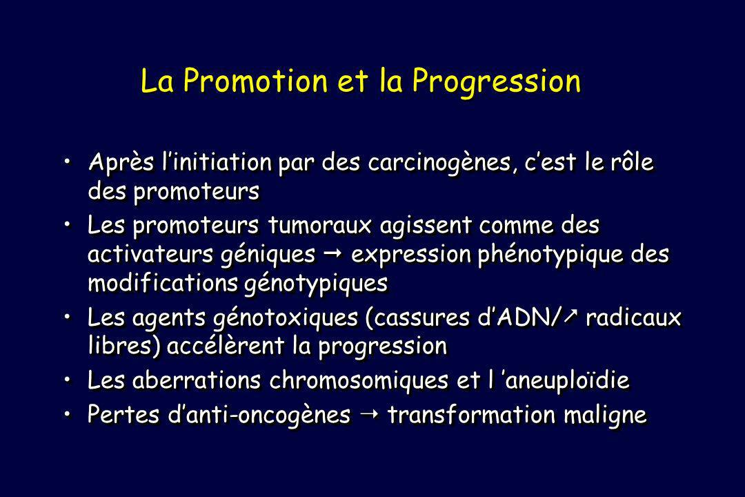 La Promotion et la Progression