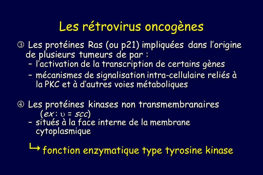 Les rétrovirus oncogènes
