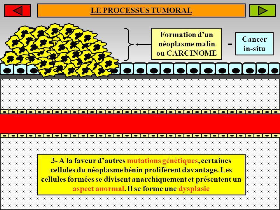 Formation d'un néoplasme malin ou CARCINOME