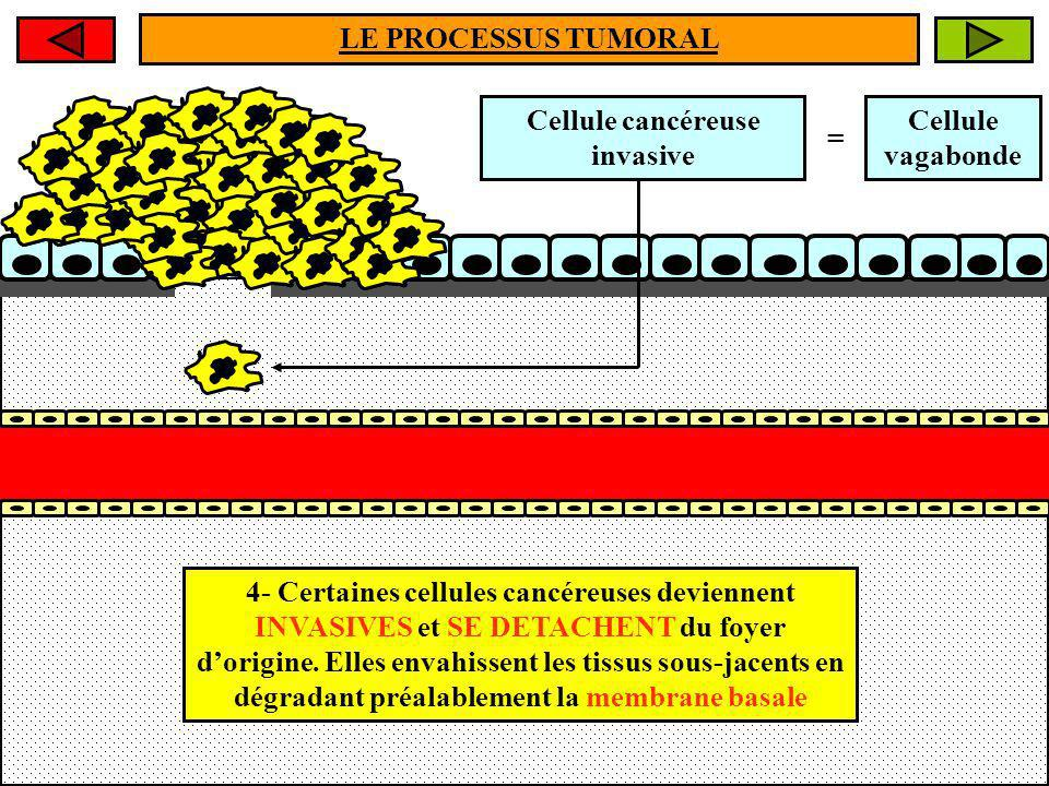 Cellule cancéreuse invasive