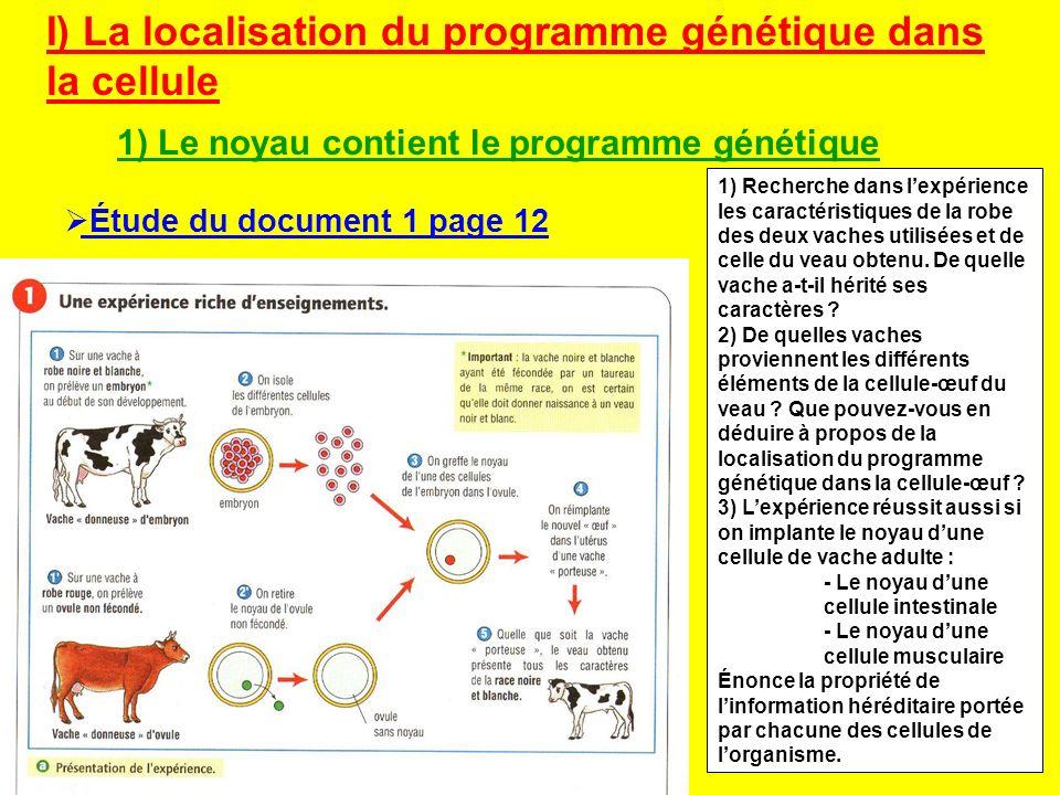 I) La localisation du programme génétique dans la cellule