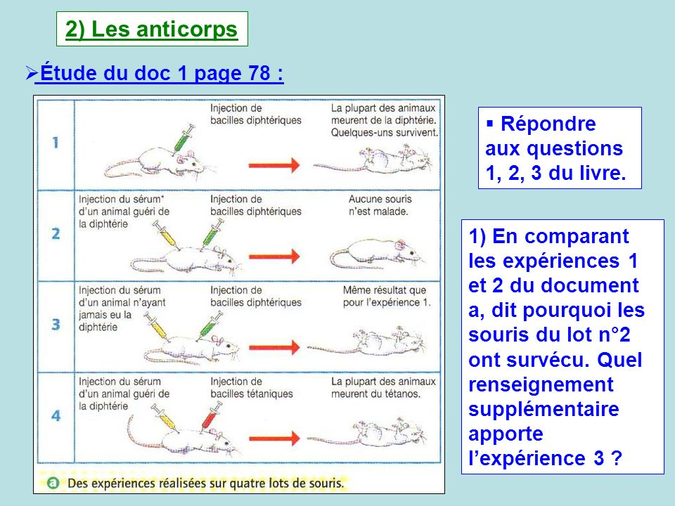 2) Les anticorps Étude du doc 1 page 78 :