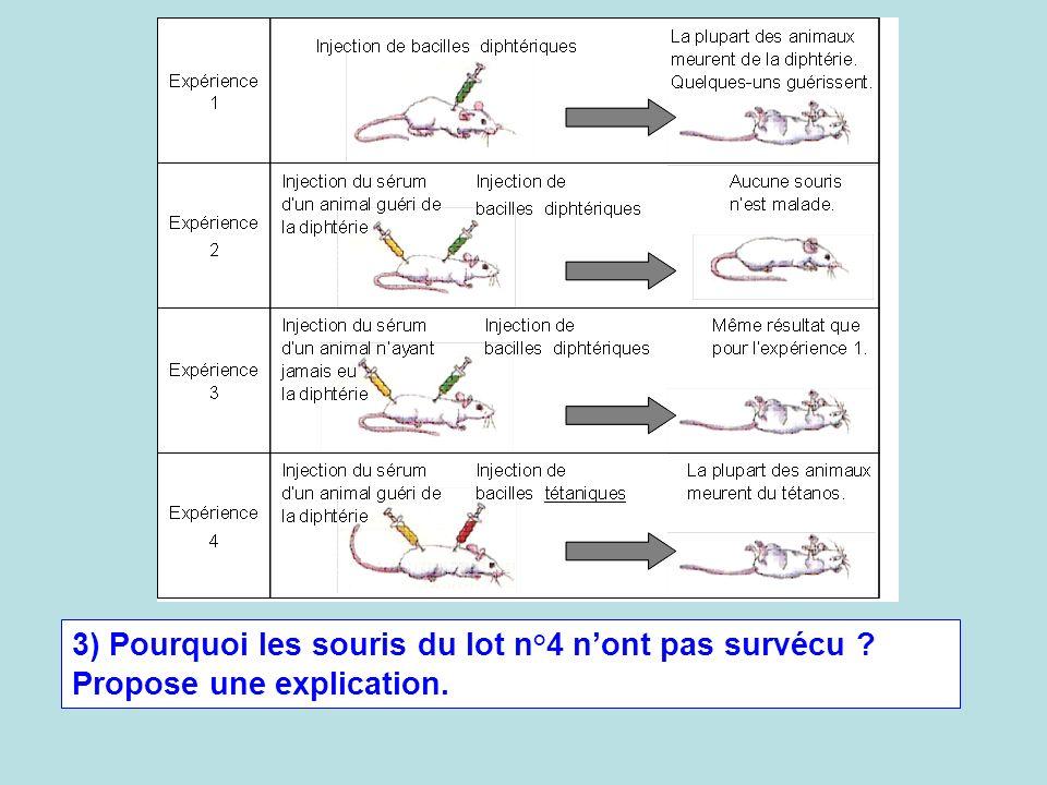 3) Pourquoi les souris du lot n°4 n'ont pas survécu
