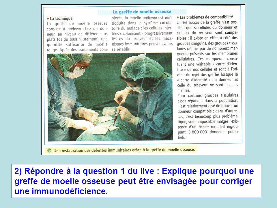 2) Répondre à la question 1 du live : Explique pourquoi une greffe de moelle osseuse peut être envisagée pour corriger une immunodéficience.