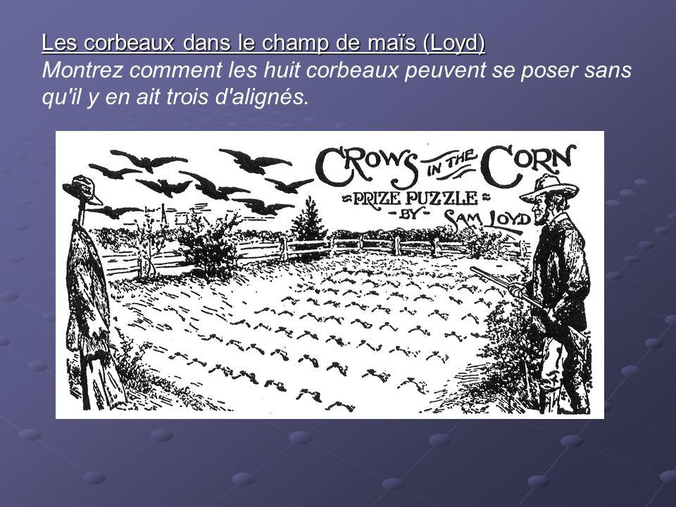 Les corbeaux dans le champ de maïs (Loyd)