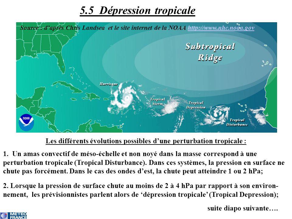 Les différents évolutions possibles d'une perturbation tropicale :