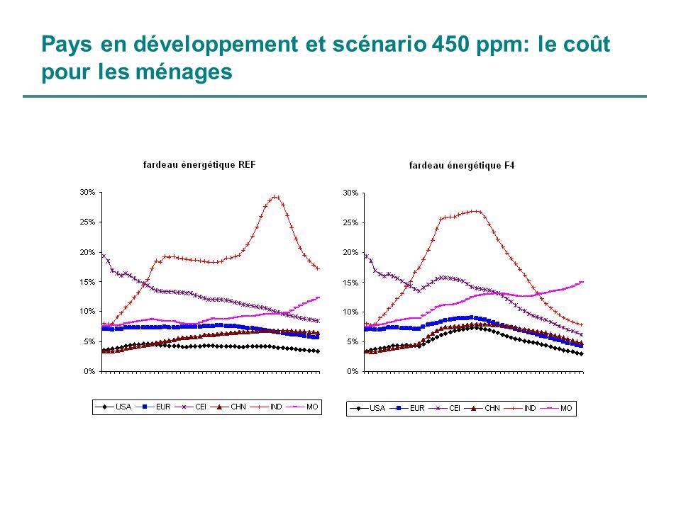 Pays en développement et scénario 450 ppm: le coût pour les ménages
